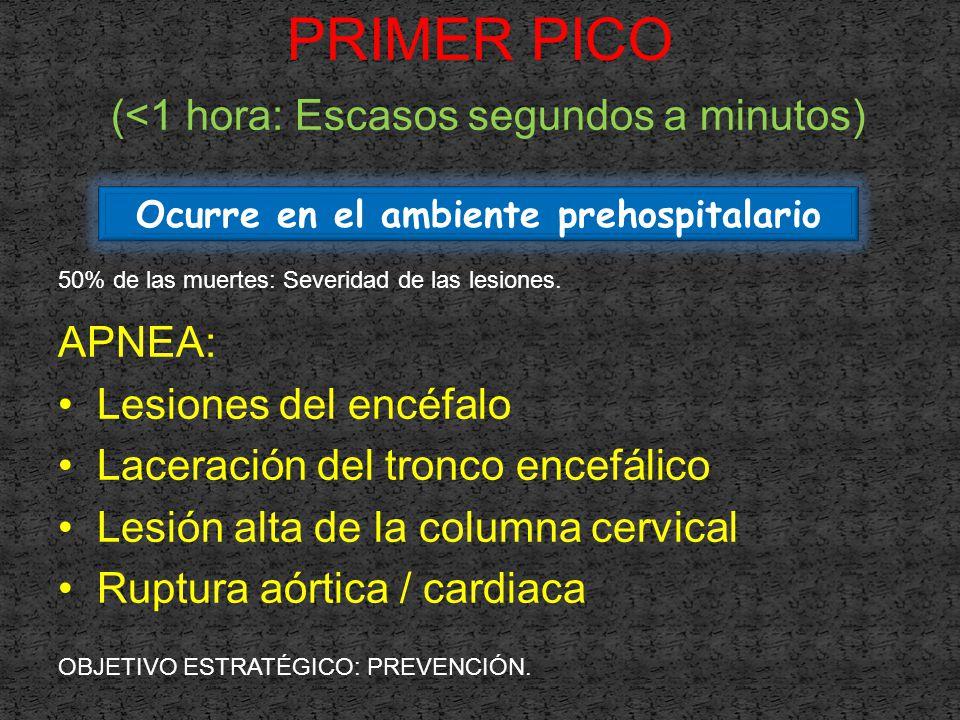 APNEA: Lesiones del encéfalo Laceración del tronco encefálico Lesión alta de la columna cervical Ruptura aórtica / cardiaca Ocurre en el ambiente prehospitalario PRIMER PICO (<1 hora: Escasos segundos a minutos) 50% de las muertes: Severidad de las lesiones.
