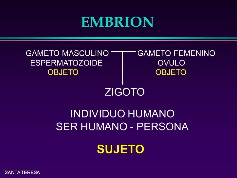 SANTA TERESA EMBRION GAMETO MASCULINO GAMETO FEMENINO ESPERMATOZOIDE OVULO OBJETO OBJETO ZIGOTO INDIVIDUO HUMANO SER HUMANO - PERSONA SUJETO