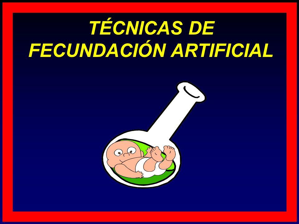 TÉCNICAS DE FECUNDACIÓN ARTIFICIAL