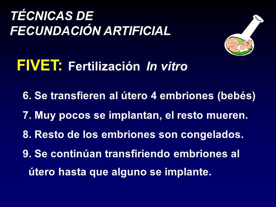 TÉCNICAS DE FECUNDACIÓN ARTIFICIAL FIVET: Fertilización In vitro 6.