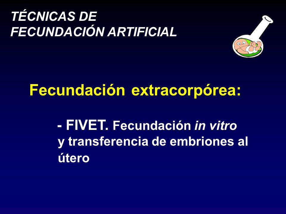 TÉCNICAS DE FECUNDACIÓN ARTIFICIAL Fecundación extracorpórea: - FIVET.