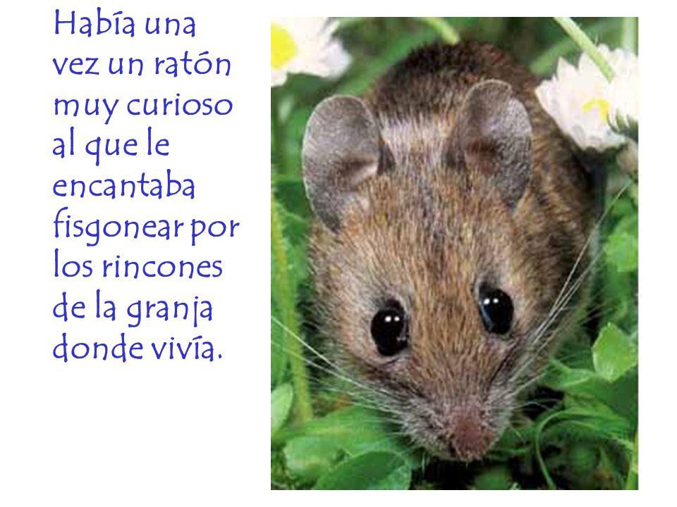 Había una vez un ratón muy curioso al que le encantaba fisgonear por los rincones de la granja donde vivía.