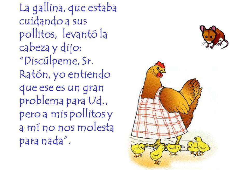 La gallina, que estaba cuidando a sus pollitos, levantó la cabeza y dijo: Discúlpeme, Sr. Ratón, yo entiendo que ese es un gran problema para Ud., per