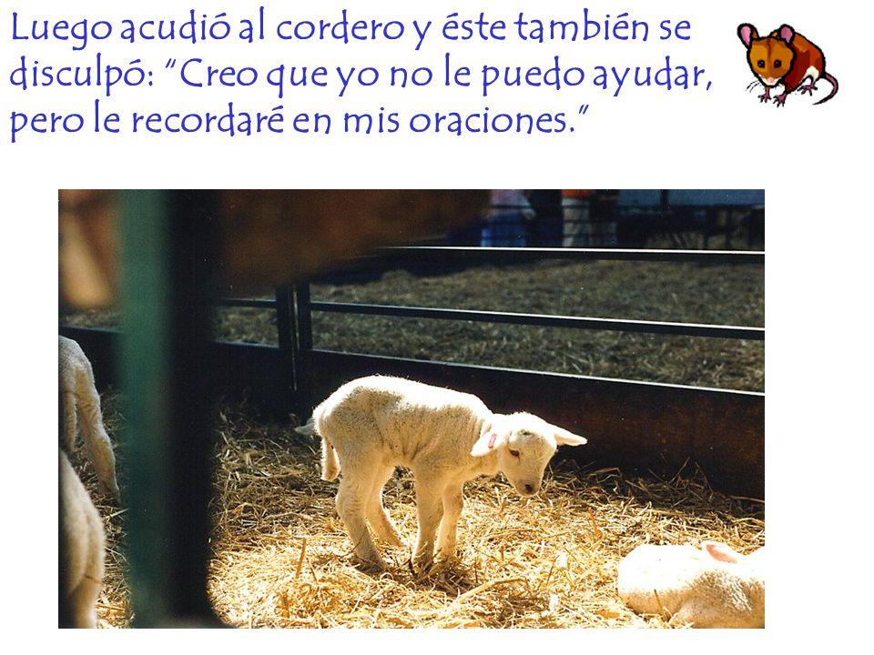 Después se dirigió a la vaca, pero ésta le dijo: ¿Y Ud.