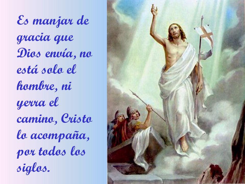 Que en la noche postrera De su humano camino Cristo se hizo manjar En el pan y en el Vino Es manjar de gracia, que Dios envía para que en la tierra, reine la alegría, para que los hombres tengan nueva vida