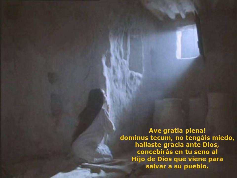 En Nazaret una Virgen abría a Dios su deseo. Silencio de mediodía sobre los campos ardiendo. Abrevia Señor las horas sobre los hombros resecos, que de