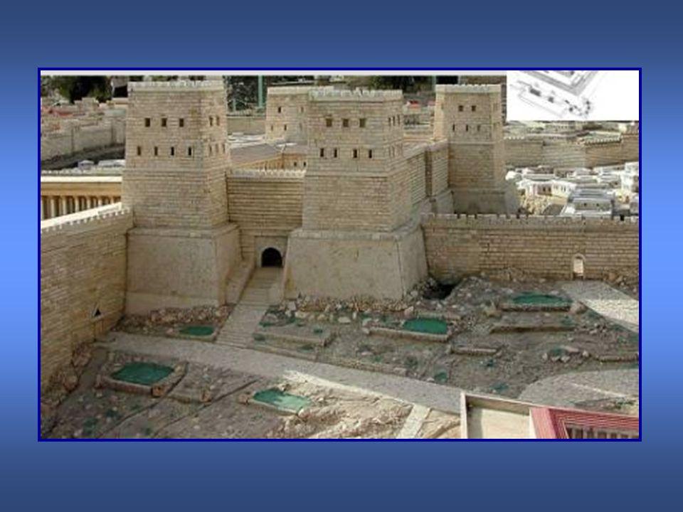 * Se alborotan los muchos judíos que se encontraban en el lugar, detienen a Pablo e intentan darle muerte.