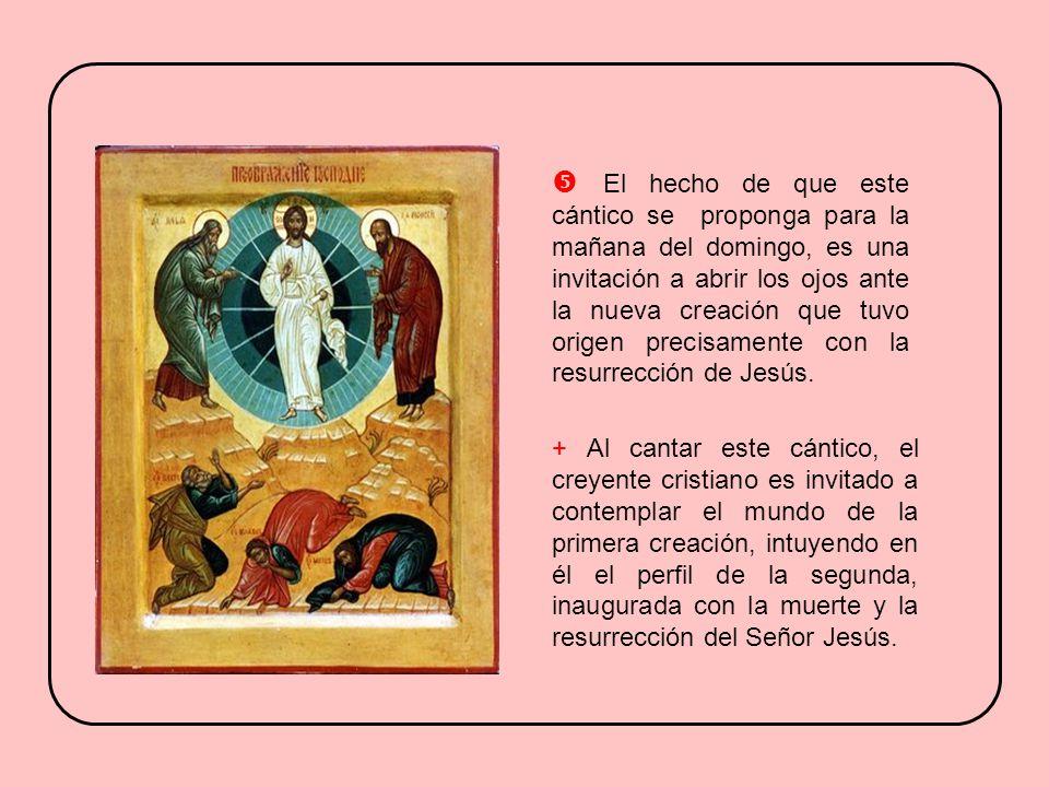 En este pasaje inicial destacan algunos elementos: B) La bendición divina a menudo se otorga por intermedio de los sacerdotes (cf. Nm 6,22-23.27; Si 5