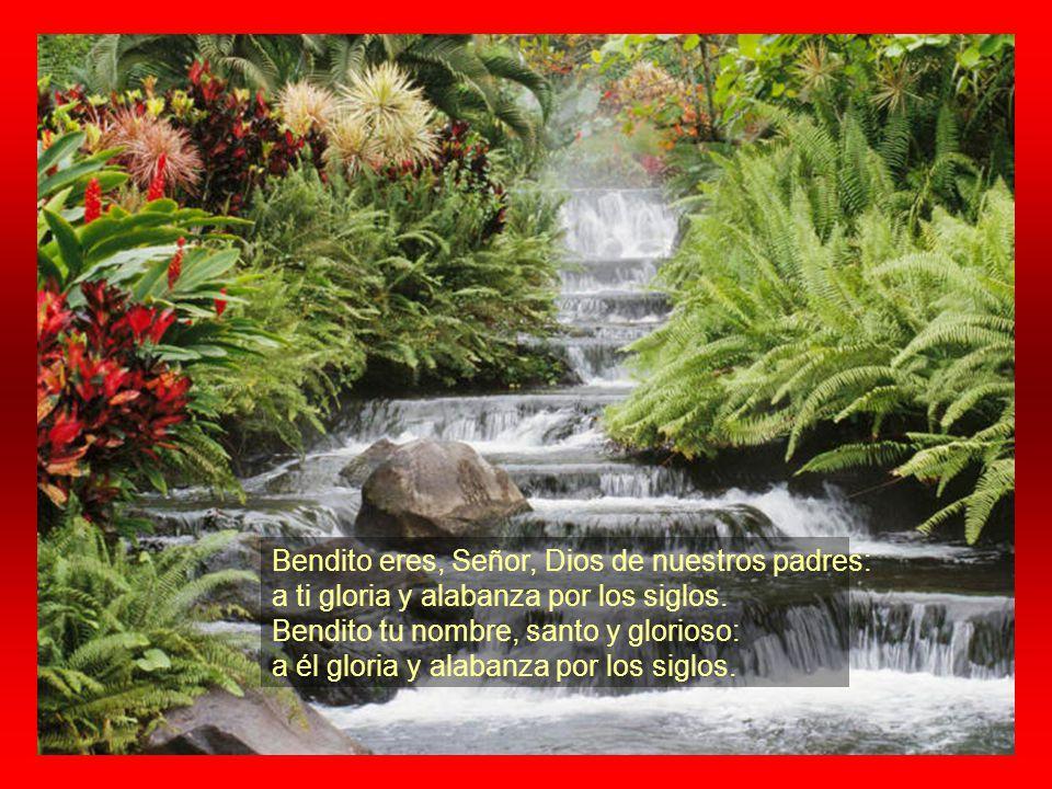 Bendito eres, Señor, Dios de nuestros padres: a ti gloria y alabanza por los siglos.