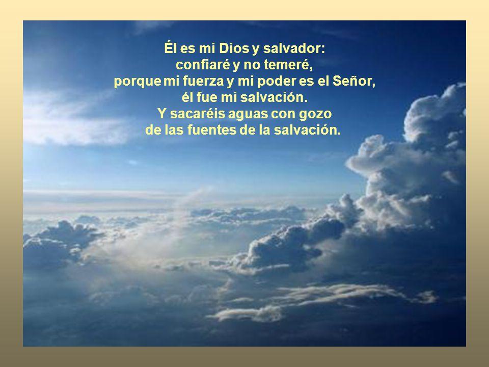 Te doy gracias, Señor, porque estabas airado contra mí, pero ha cesado tu ira y me has consolado.