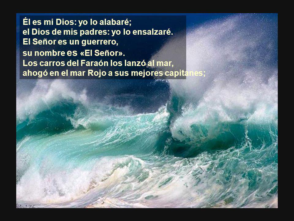 Cantaré al Señor, sublime es su victoria, caballos y carros ha arrojado en el mar.
