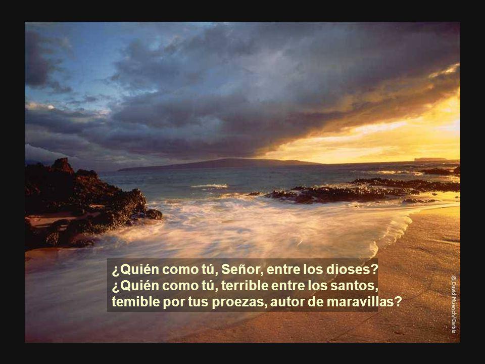 Pero sopló tu aliento, y los cubrió el mar, se hundieron como plomo en las aguas formidables.