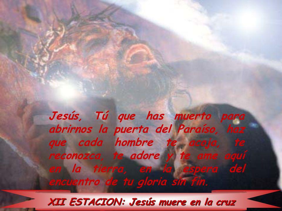 XII ESTACION: Jesús muere en la cruz Jesús, Tú que has muerto para abrirnos la puerta del Paraíso, haz que cada hombre te acoja, te reconozca, te ador