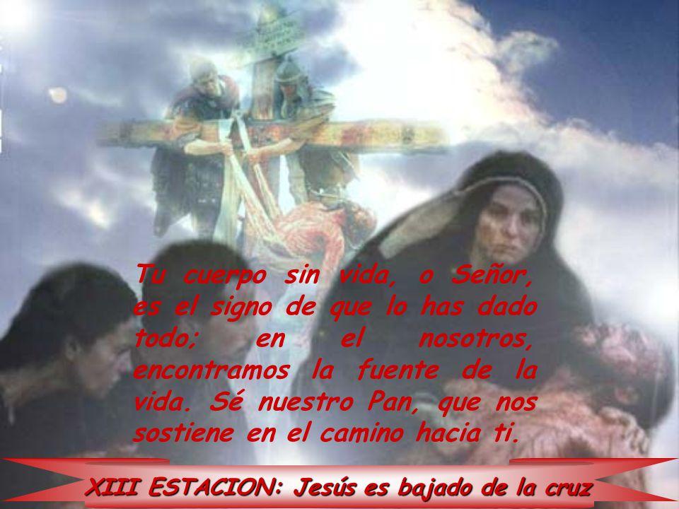 XIII ESTACION: Jesús es bajado de la cruz Tu cuerpo sin vida, o Señor, es el signo de que lo has dado todo; en el nosotros, encontramos la fuente de l
