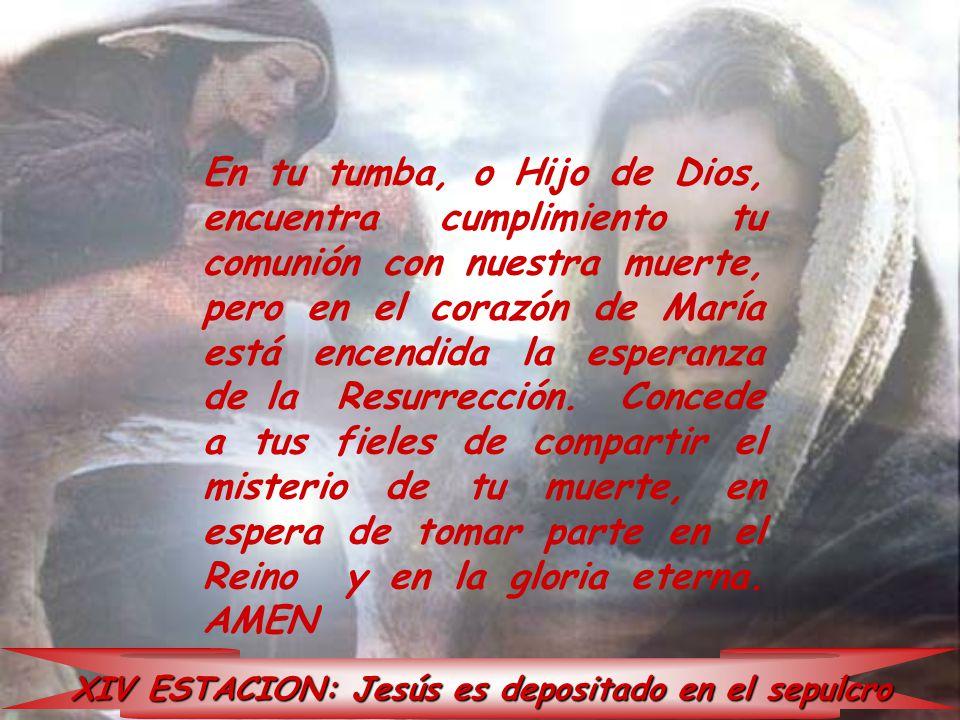XIV ESTACION: Jesús es depositado en el sepulcro En tu tumba, o Hijo de Dios, encuentra cumplimiento tu comunión con nuestra muerte, pero en el corazó
