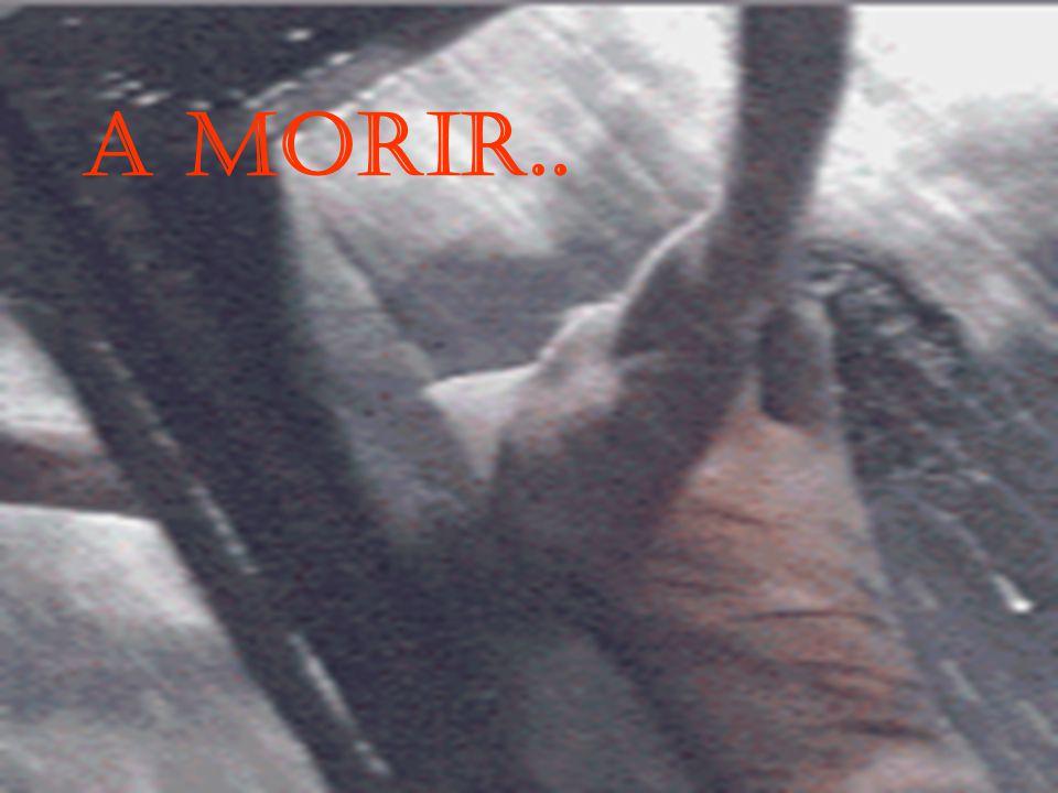 A MORIR..