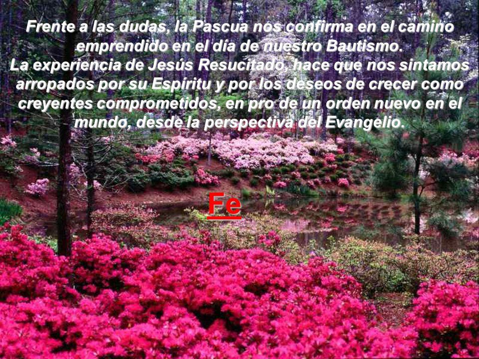 Frente a la cobardía, la Pascua, nos confiere fuerzas para seguir adelante. Jesús ha cumplido y, por lo tanto, nos da una buena inyección de fortaleza