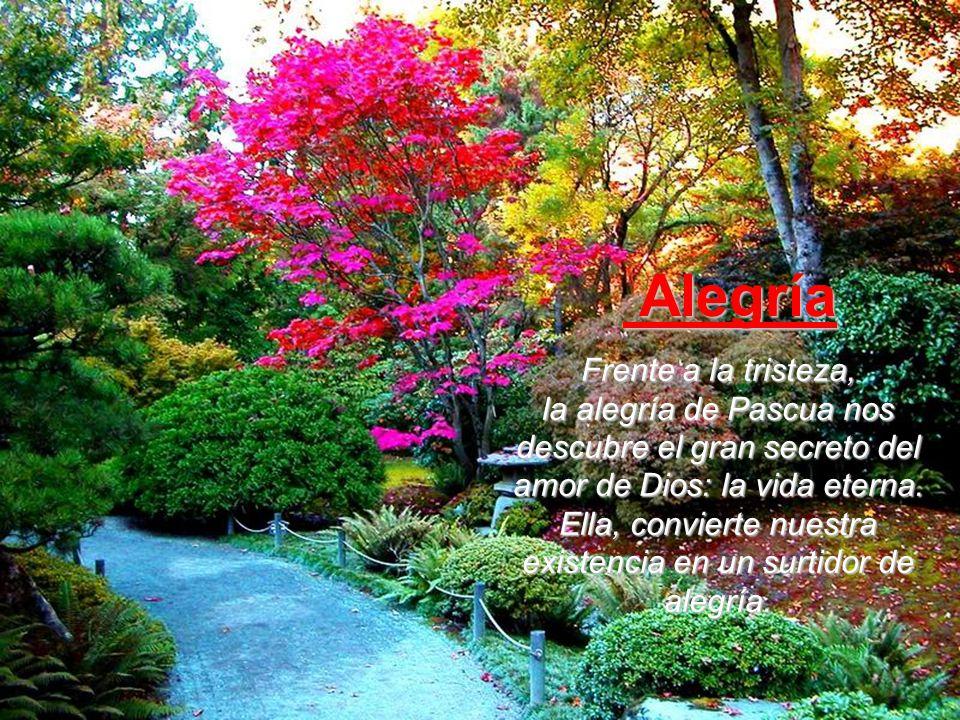 Frente a la tristeza, la alegría de Pascua nos descubre el gran secreto del amor de Dios: la vida eterna.