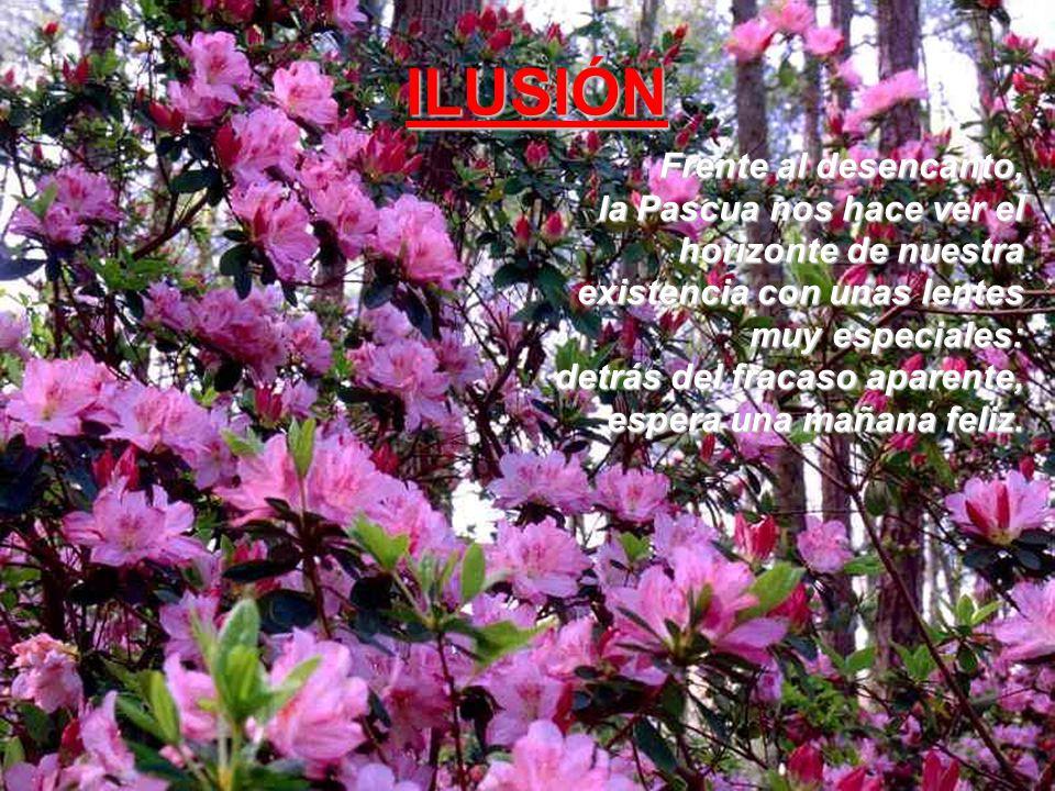 Frente al egoísmo, la Pascua, al ver a Jesús, nos enseña que el servicio es pasaporte necesario para entrar en el país del cielo. Amor