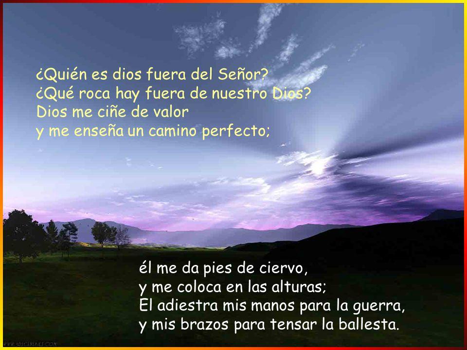 Con el fiel, tú eres fiel; con el íntegro, tú eres íntegro; con el sincero, tú eres sincero; con el astuto, tú eres sagaz. Tú salvas al pueblo afligid
