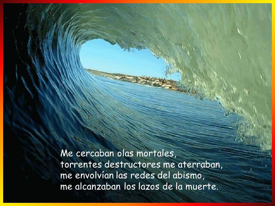 Yo te amo, Señor; tú eres mi fortaleza; Señor, mi roca, mi alcázar, mi libertador. Dios mío, peña mía, refugio mío, escudo mío, mi fuerza salvadora, m