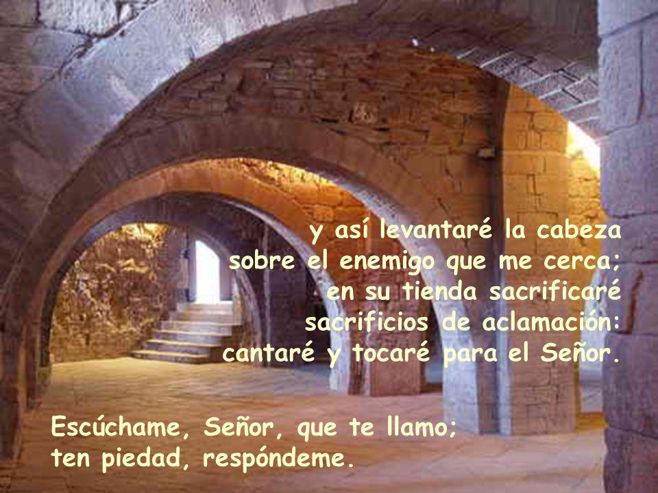 Una cosa pido al Señor, eso buscaré: habitar en la casa del Señor por los días de mi vida; gozar de la dulzura del Señor, contemplando su templo. El m