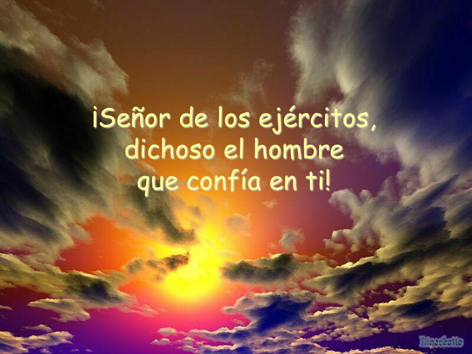 Porque el Señor es sol y escudo, él da la gracia y la gloria; el Señor no niega sus bienes a los de conducta intachable.