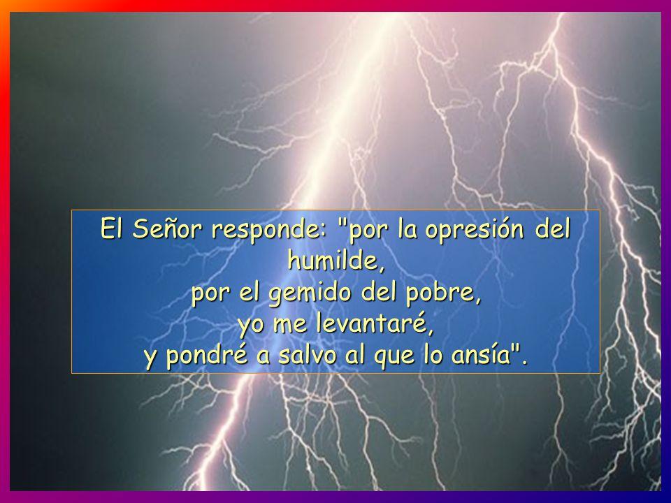 El Señor responde: por la opresión del humilde, por el gemido del pobre, yo me levantaré, y pondré a salvo al que lo ansía .