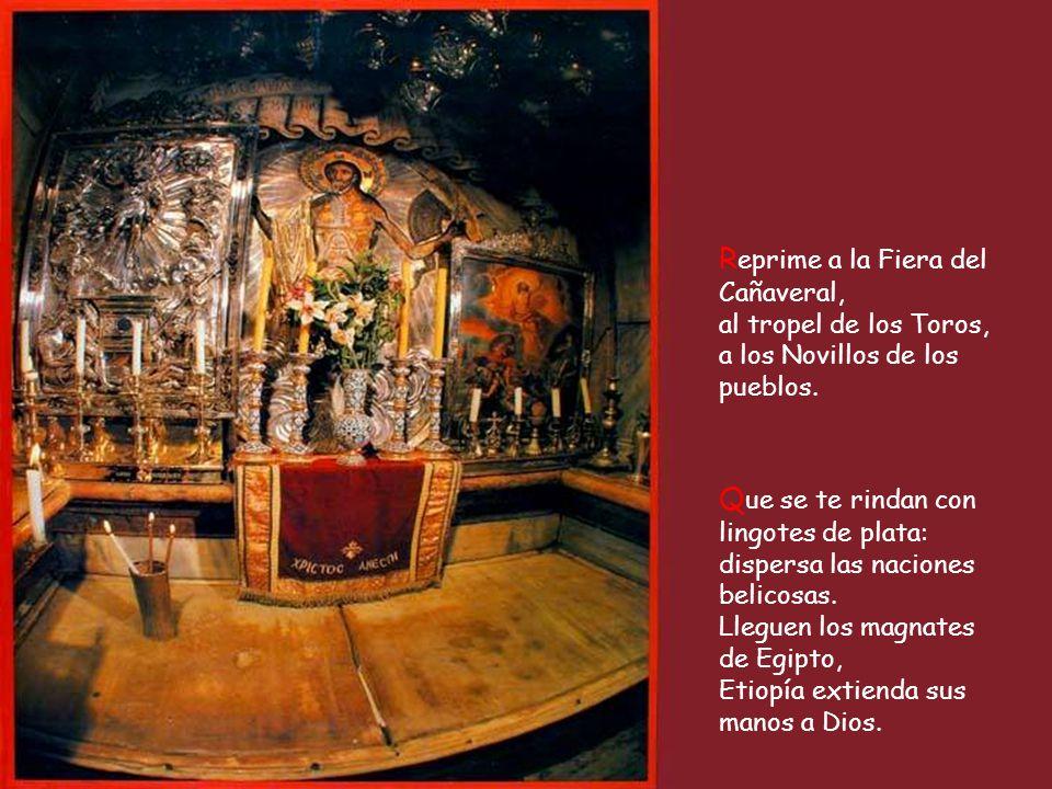 Oh Dios, despliega tu poder, tu poder, oh Dios, que actúa en favor nuestro. A tu templo de Jerusalén traigan los reyes su tributo.