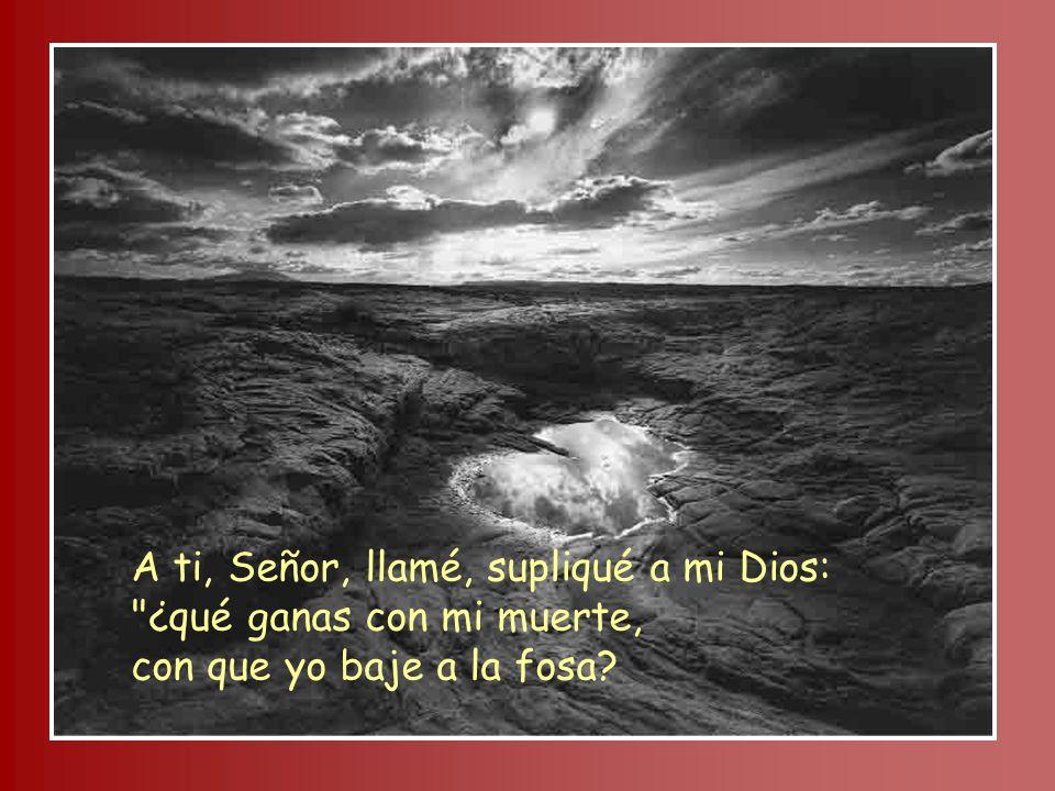 A ti, Señor, llamé, supliqué a mi Dios: ¿qué ganas con mi muerte, con que yo baje a la fosa?
