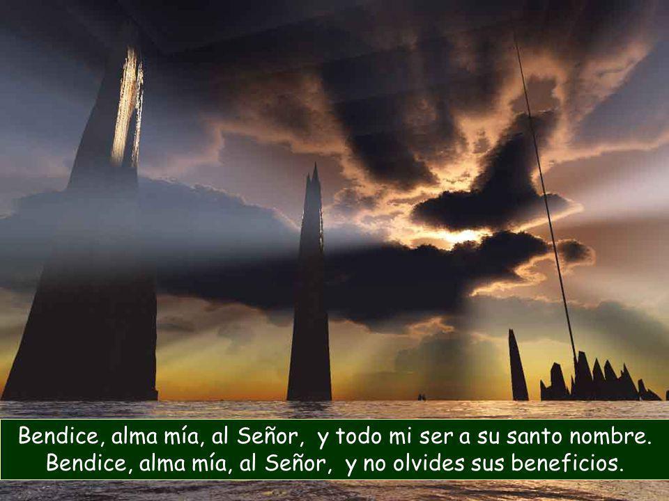 Bendice, alma mía, al Señor, y todo mi ser a su santo nombre.