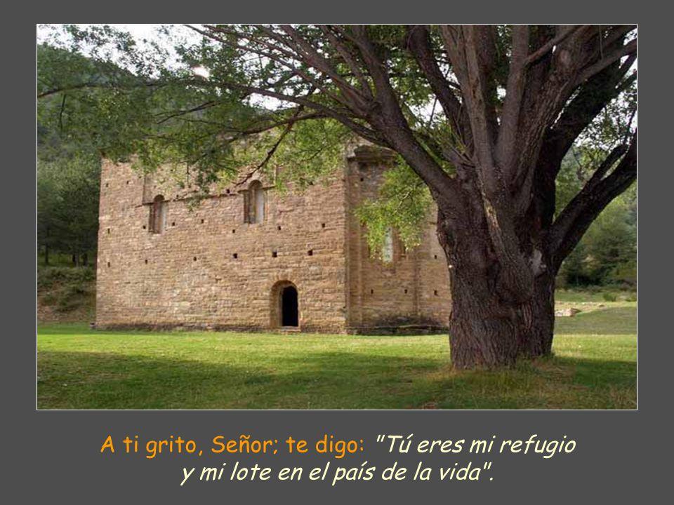 A ti grito, Señor; te digo: Tú eres mi refugio y mi lote en el país de la vida .