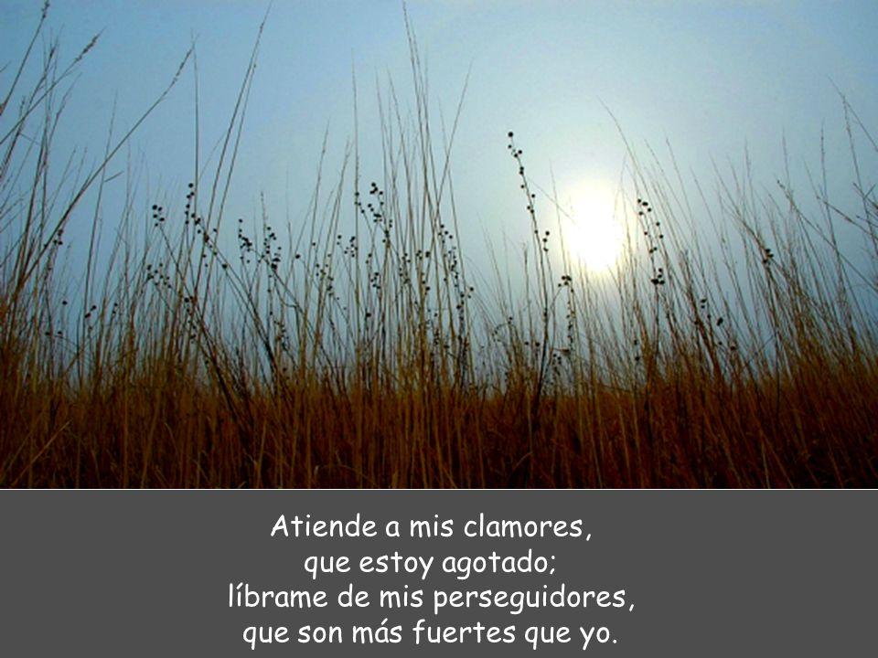Atiende a mis clamores, que estoy agotado; líbrame de mis perseguidores, que son más fuertes que yo.