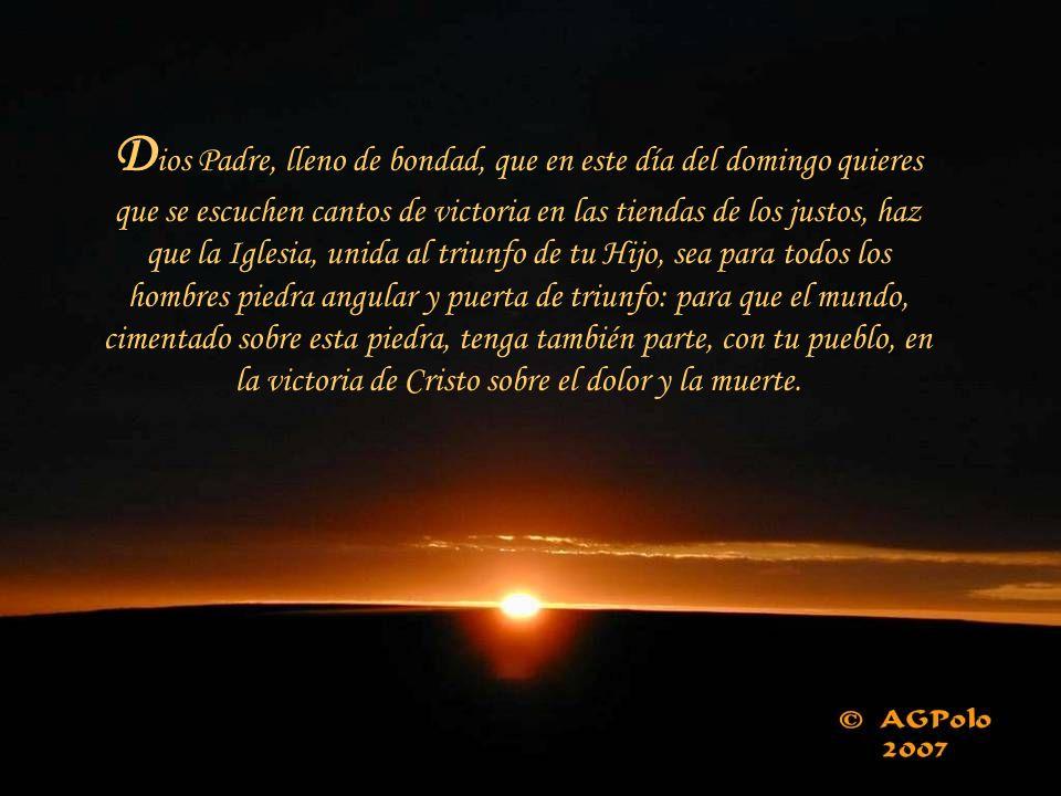 «Este es el día en que el Señor ha actuado».¡Ojalá pudiera decir yo eso de cada día de mi vida.
