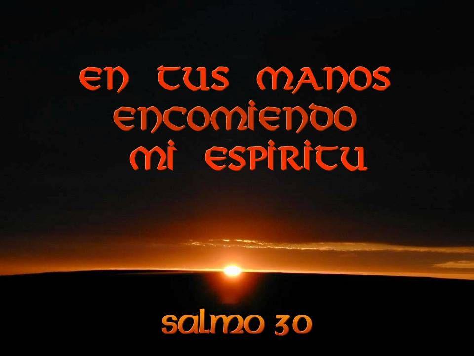 Pero yo confío en ti, Señor, Te digo:Tú eres mi Dios.