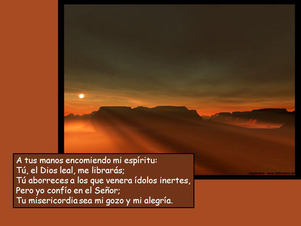 A ti, Señor, me acojo: no quede yo nunca defraudado; tú, que eres justo, ponme a salvo, inclina tu oído hacia mí; ven aprisa a librarme, sé la roca de mi refugio, un baluarte donde me salve, tú que eres mi roca y mi baluarte; por tu nombre dirígeme y guíame: sácame de la red que me han tendido, porque tú eres mi amparo.