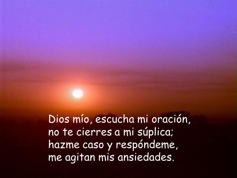 Dios mío, escucha mi oración, no te cierres a mi súplica; hazme caso y respóndeme, me agitan mis ansiedades.