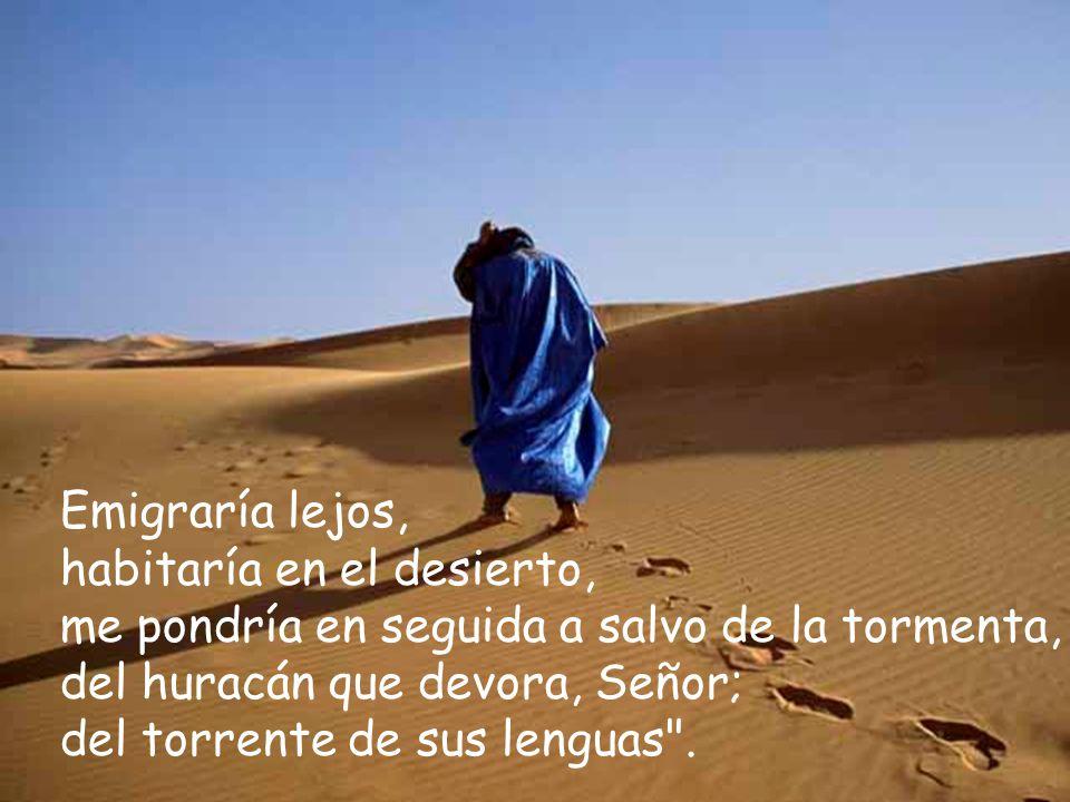 Emigraría lejos, habitaría en el desierto, me pondría en seguida a salvo de la tormenta, del huracán que devora, Señor; del torrente de sus lenguas .