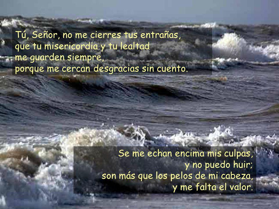 No me he guardado en el pecho tu defensa, he contado tu fidelidad y tu salvación, no he negado tu misericordia y tu lealtad ante la gran asamblea.