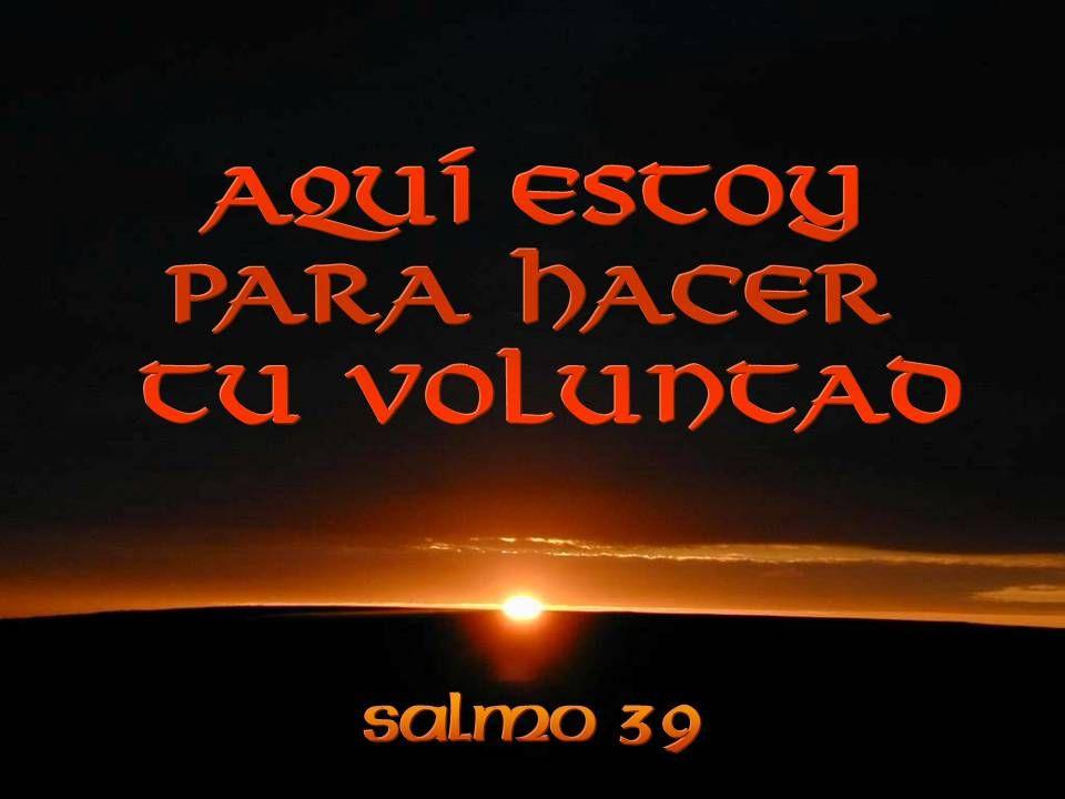 Yo soy pobre y desgraciado, pero el Señor se cuida de mí; tú eres mi auxilio y mi liberación: Dios mío, no tardes.