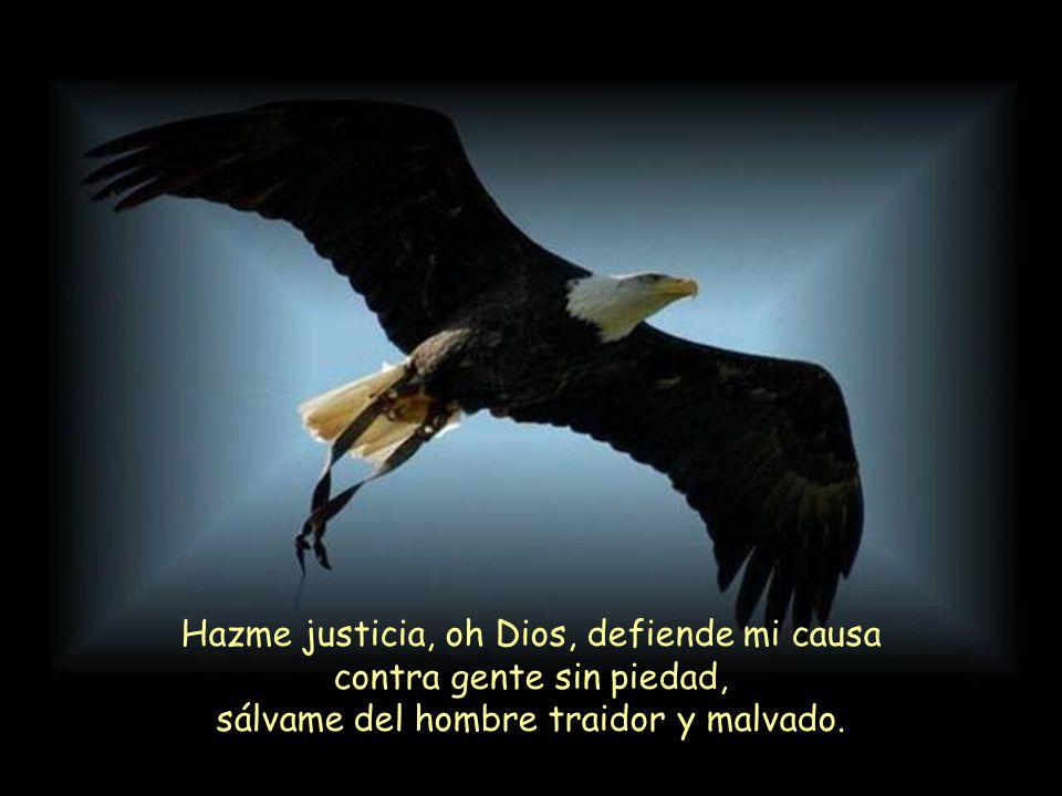 Hazme justicia, oh Dios, defiende mi causa contra gente sin piedad, sálvame del hombre traidor y malvado.
