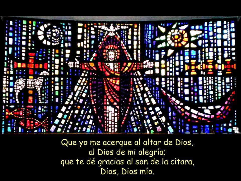 Que yo me acerque al altar de Dios, al Dios de mi alegría; que te dé gracias al son de la cítara, Dios, Dios mío.