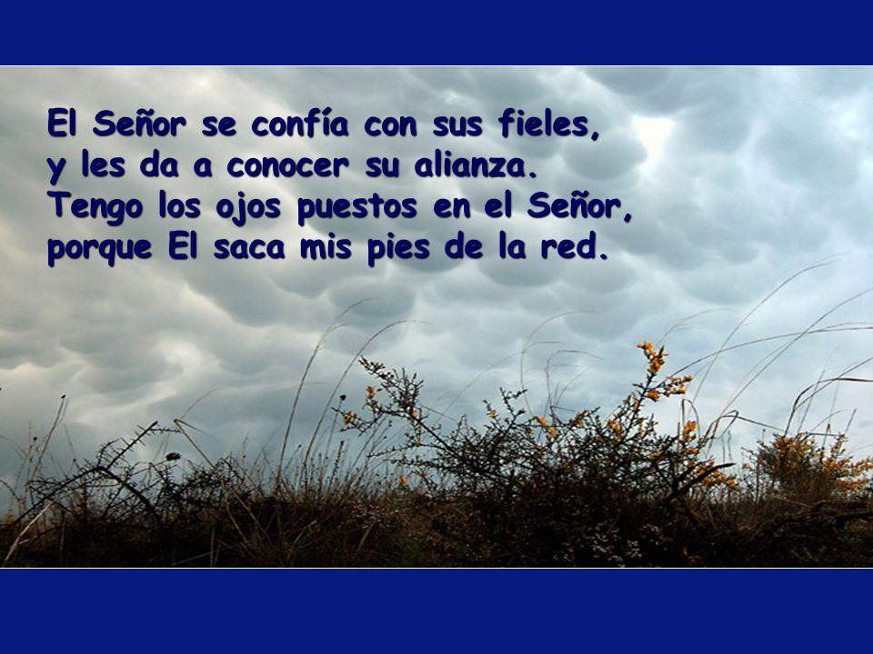 ¿Hay alguien que tema al Señor El le enseñará el camino escogido: su alma vivirá feliz, su descendencia poseerá la tierra.