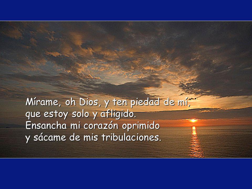 El Señor se confía con sus fieles, y les da a conocer su alianza. Tengo los ojos puestos en el Señor, porque El saca mis pies de la red.