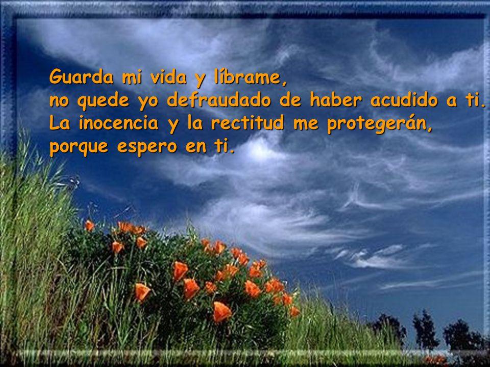 Mira mis trabajos y mis penas y perdona todos mis pecados; mira cuántos son mis enemigos, que me detestan con odio cruel.