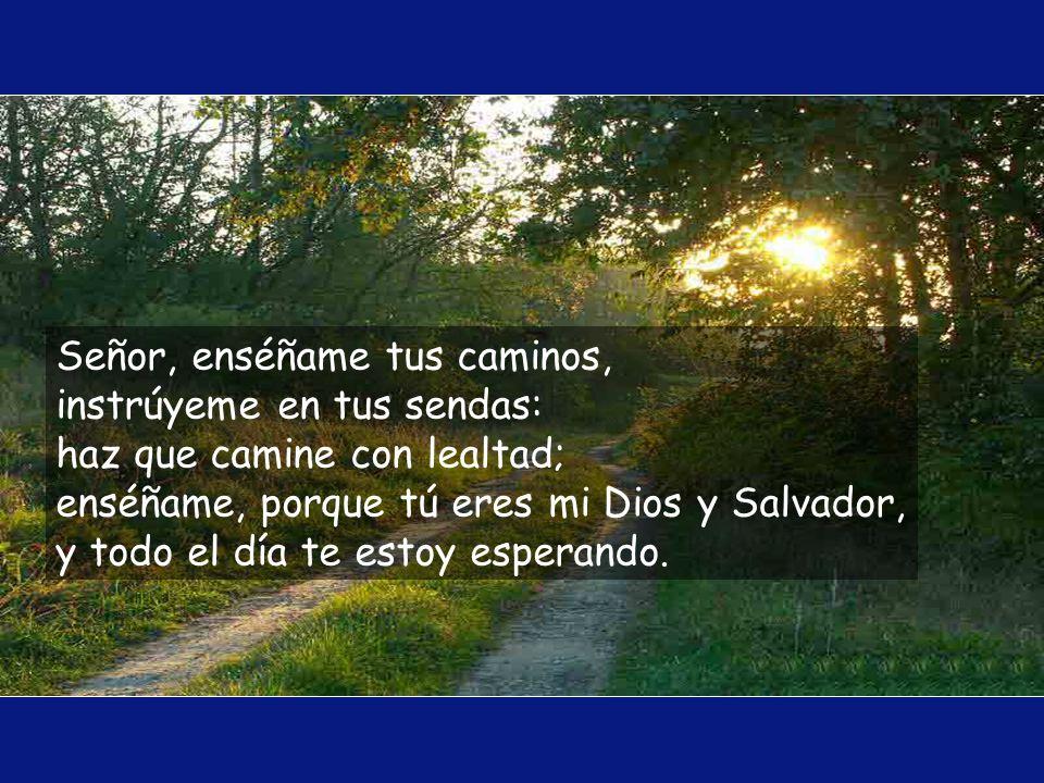 A ti, Señor, levanto mi alma; Dios mío, en ti confío no quede yo defraudado, que no triunfen de mí mis enemigos, pues los que esperan en ti no quedan
