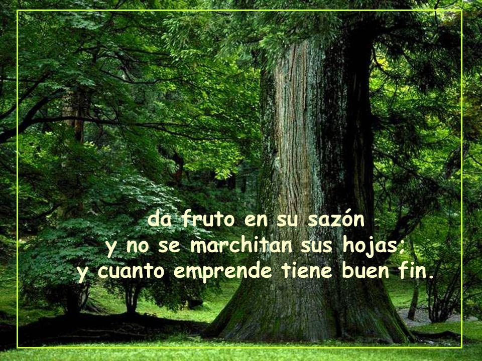 da fruto en su sazón y no se marchitan sus hojas; y cuanto emprende tiene buen fin.