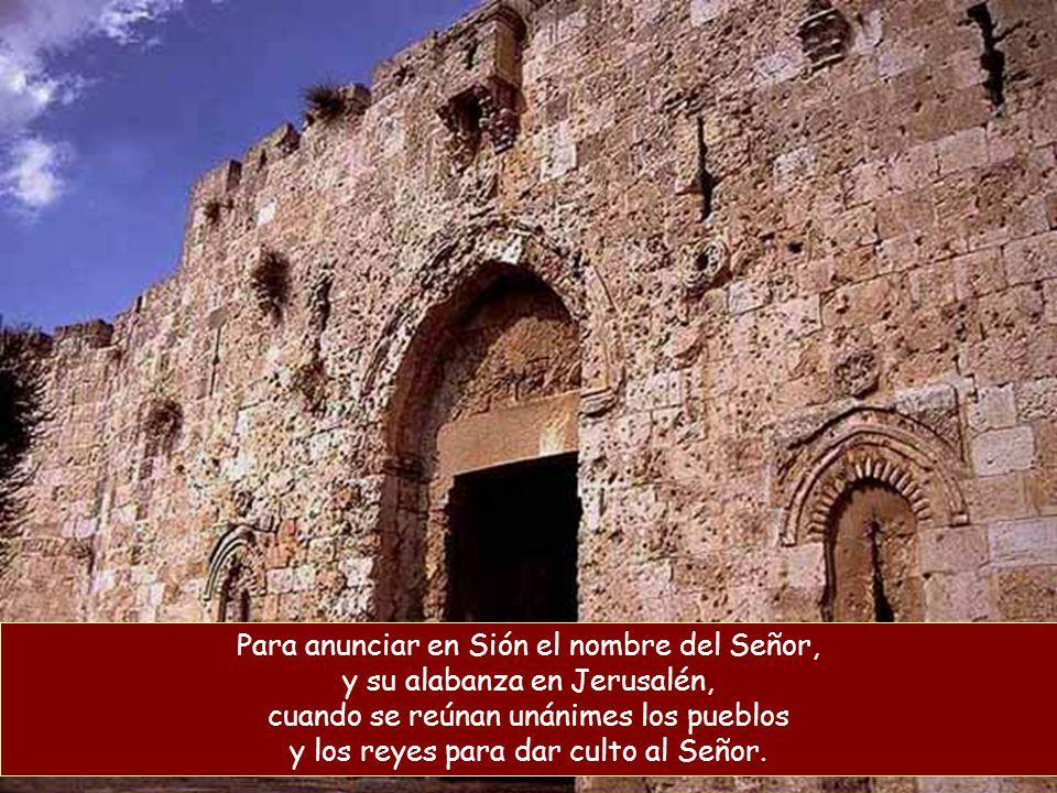 Que el Señor ha mirado desde su excelso santuario, desde el cielo se ha fijado en la tierra, para escuchar los gemidos de los cautivos y librar a los