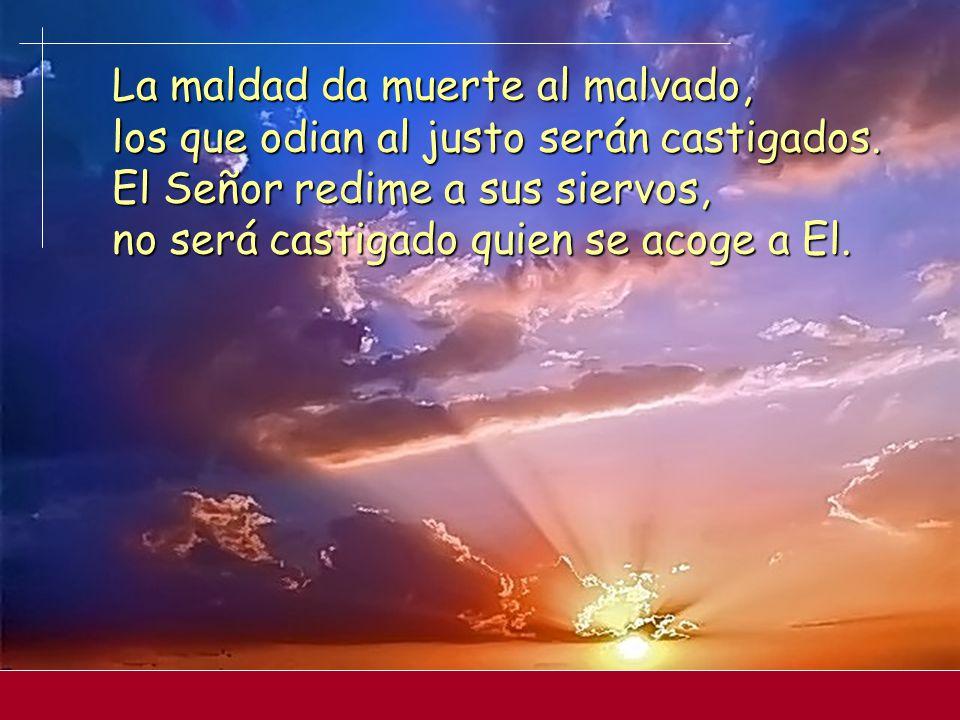 Cuando uno grita, el Señor lo escucha y lo libra de sus angustias; el Señor está cerca de los atribulados, salva a los abatidos. Aunque el justo sufra