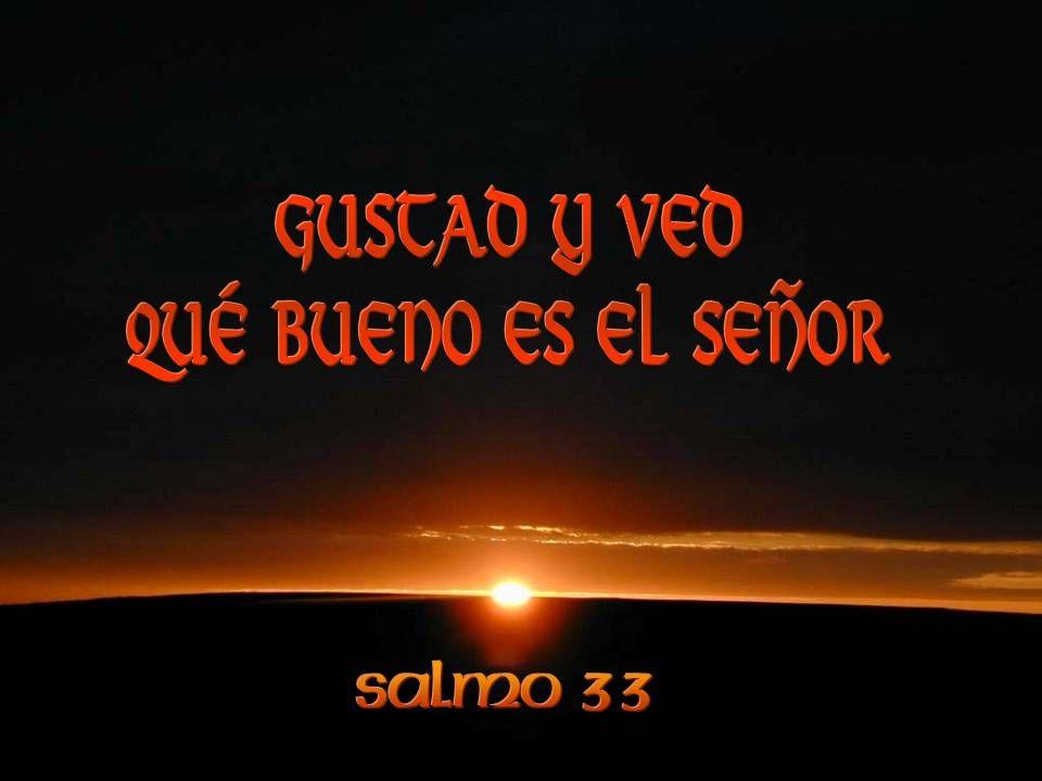 Dejo que las palabras resuenen en mis oídos: «Gustad y ved qué bueno es el Señor».